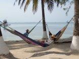 Enjoying the hammocks