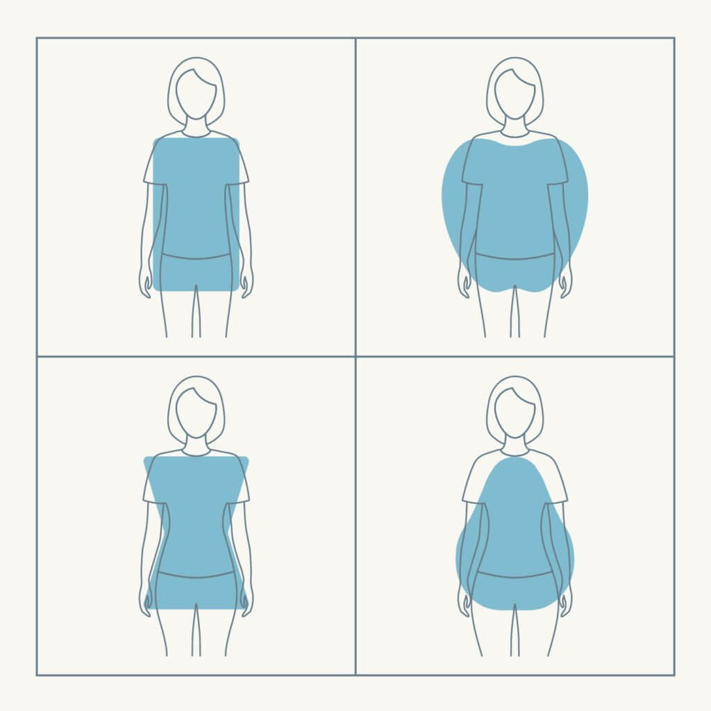 an illustration showing the 4 major body types