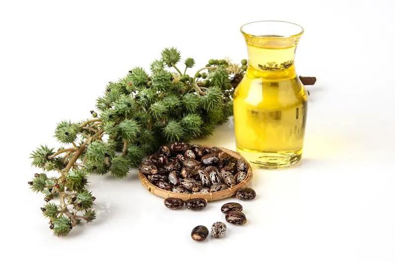 castor seeds and castor oil in a glass jar