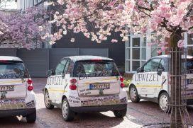 Hameln DeWeZet Smart Kirschblüte 2014