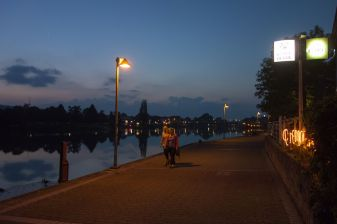 Hameln Sumpfblume Weser 2014
