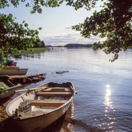 Schweden 1982