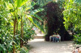 Insel Mainau am Bodensee 1988