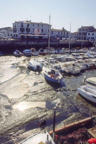 Île de Ré 1991