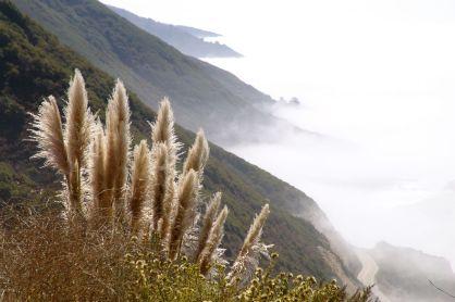 2005-californien-095