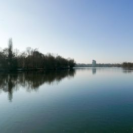Silvesterlauf Wöhrder See Nürnberg 2016