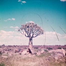 1973-suedafrika-namibia-018