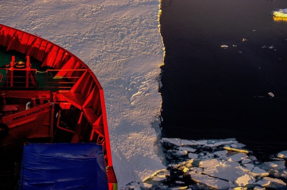Antarctica (119 of 290)