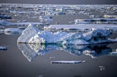 Antarctica (283 of 290)