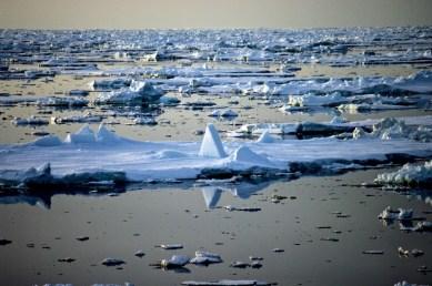 Antarctica (284 of 290)
