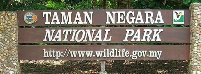 Taman Negara - Tropisk Regnskog - Malaysia