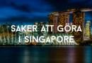 Saker att göra i Singapore