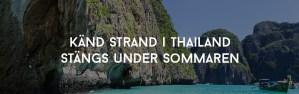 Känd strand i Thailand stängs under sommaren