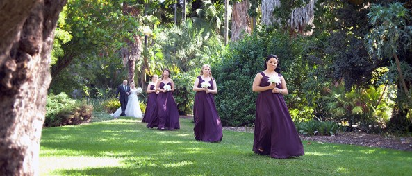 Bridal party arriving in Adelaide botanic gardens