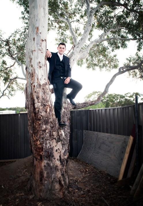 Groom up a tree
