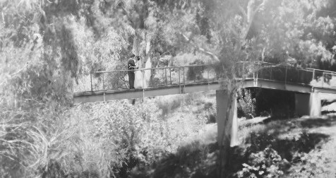 Bride and Groom in Gawler Gardens