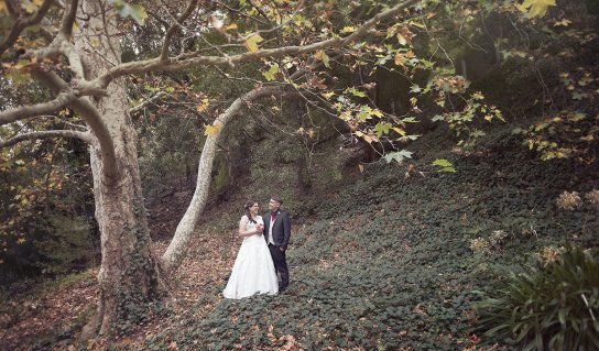 Bride and groom under autumnal colours