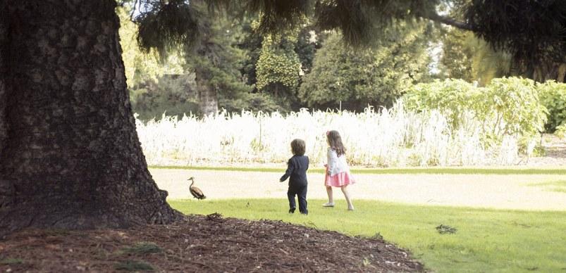 Kids running after a duck