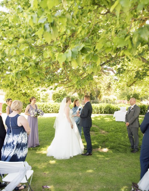 Bride and groom under the tree