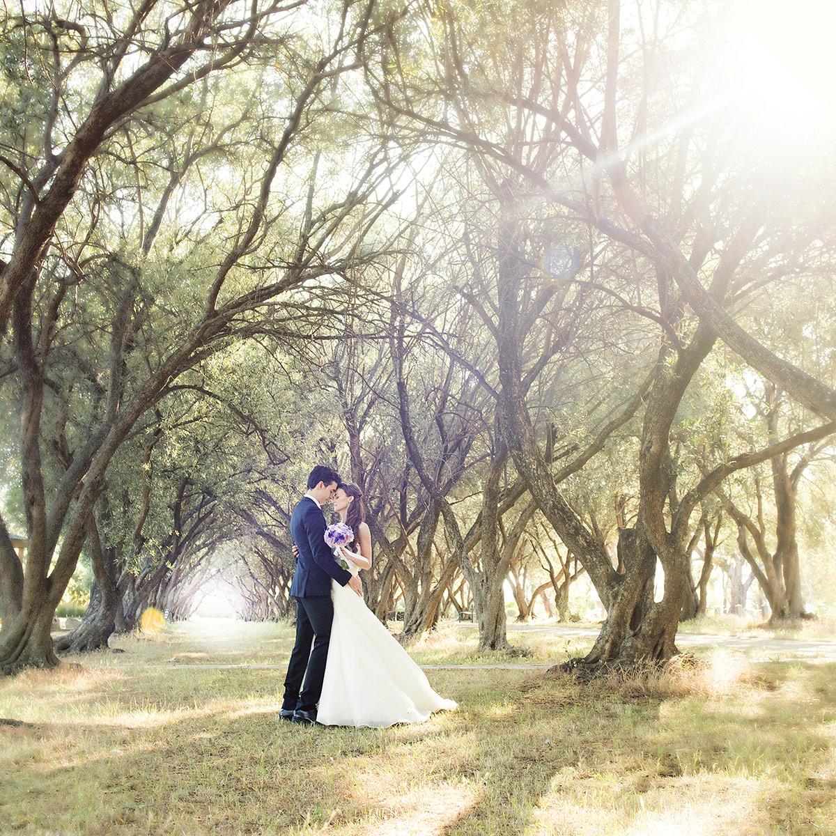 Bride and groom walking in olive trees
