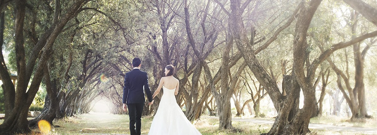 Bride and groom walking in olive trees