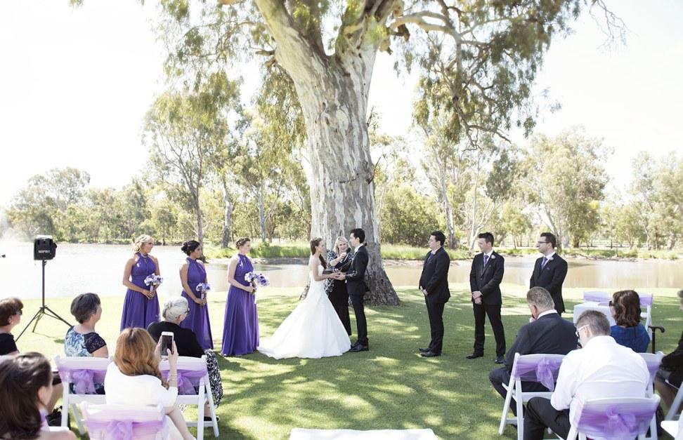 Wedding at Serafino winery