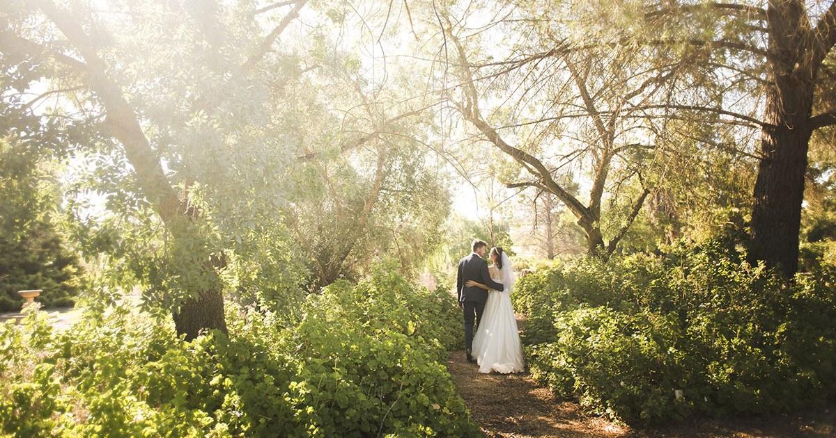 Lyndoch Hill botanic garden wedding