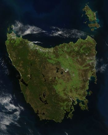 Tasmania satellite wedding