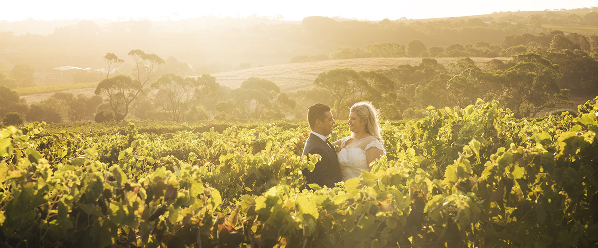 Bride and groom in vineyards