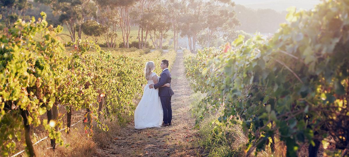 Bride and groom in vieyards