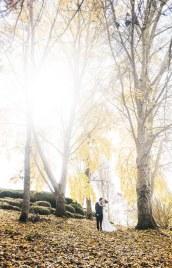 Autumn colours at the Mt Lofty Botanic Park