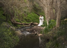 InglewoodInn creek