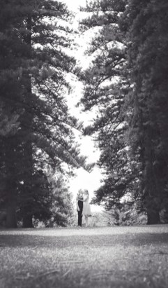 Amongst the tall trees