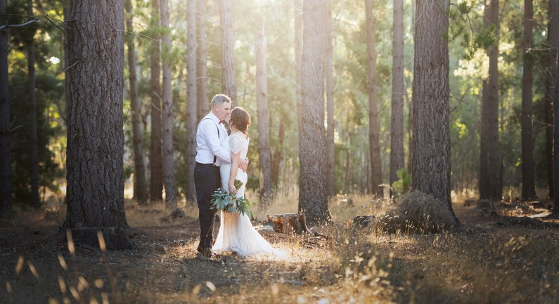 Kiss in the forest