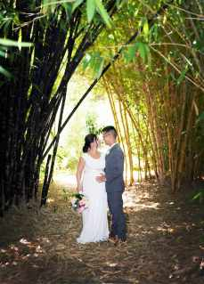 Under bamboo