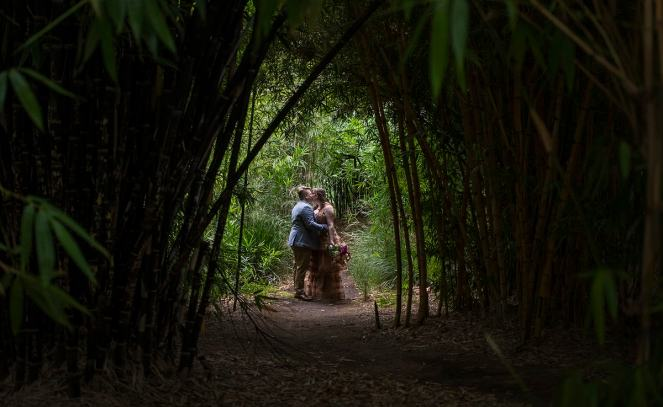 Under the bamboo