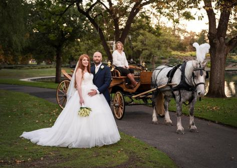 Next to the horse and carriage