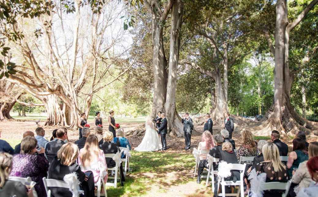 Botanic Park wedding ceremony with trees in background