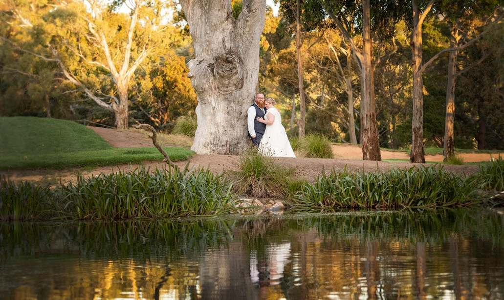 Bride and groom under gum tree