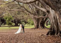 Walking into the Botanic Park Trees