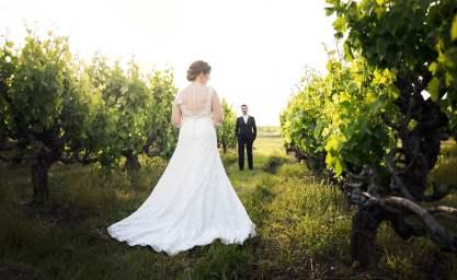 behind the bride amongst vineyards