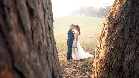 Bride and groom between the trees