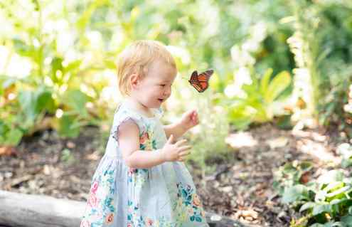 Little one playing with a butterfly