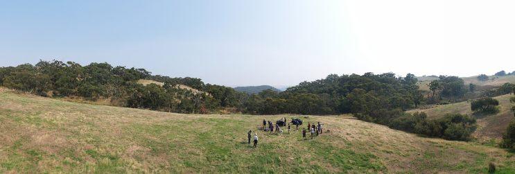 Shooting in Myponga