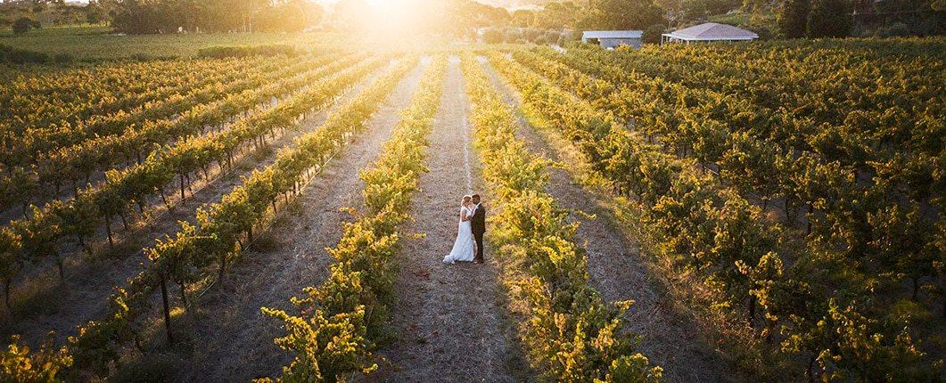 Ekhidna wines wedding at sunset