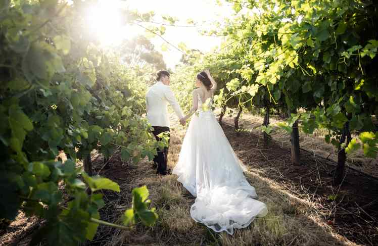 bride an dgroom walking towards sun in vineyard