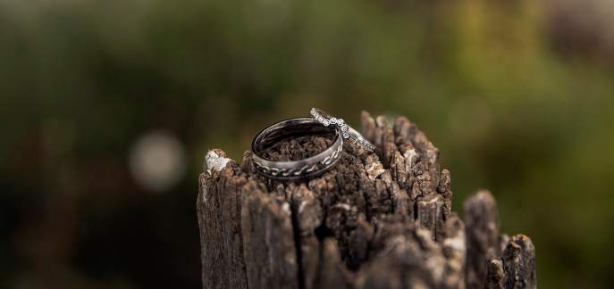 Wedding bands on fence post