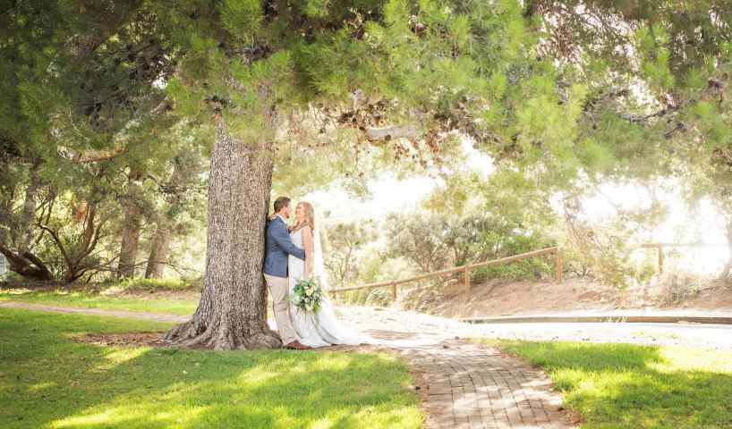 Bride and groom under a tree at Kingston House