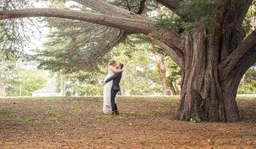 Lifting up the bride under a large tree