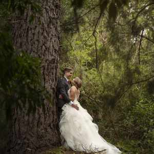 Wedding Photo of the year contest 11